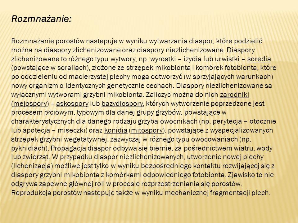 Rozmnażanie: Rozmnażanie porostów następuje w wyniku wytwarzania diaspor, które podzielić można na diaspory zlichenizowane oraz diaspory niezlichenizowane.