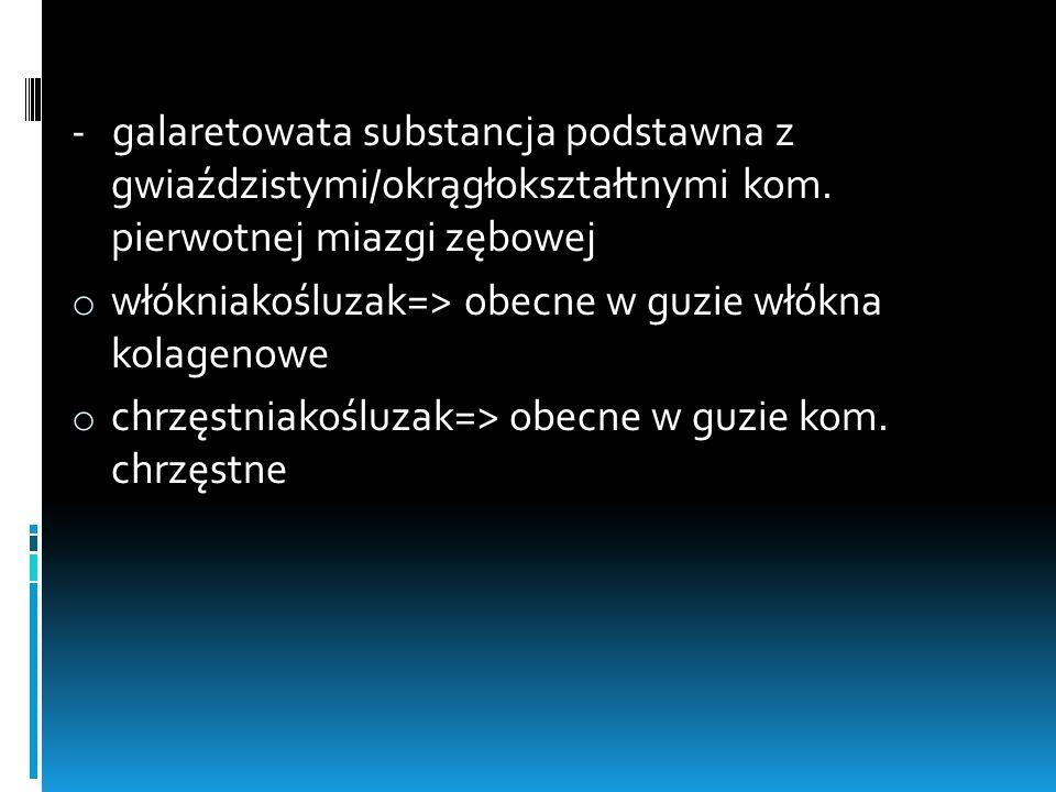 - galaretowata substancja podstawna z gwiaździstymi/okrągłokształtnymi kom. pierwotnej miazgi zębowej o włókniakośluzak=> obecne w guzie włókna kolage