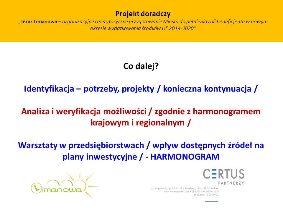 Co dalej? Identyfikacja – potrzeby, projekty / konieczna kontynuacja / Analiza i weryfikacja możliwości / zgodnie z harmonogramem krajowym i regionaln