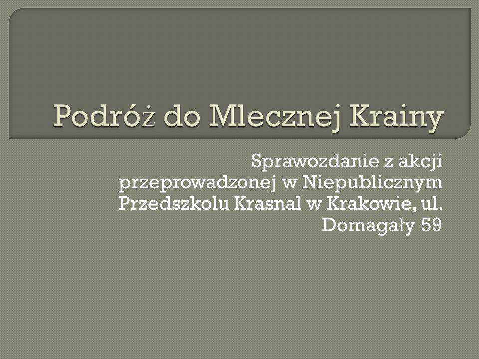 Sprawozdanie z akcji przeprowadzonej w Niepublicznym Przedszkolu Krasnal w Krakowie, ul.