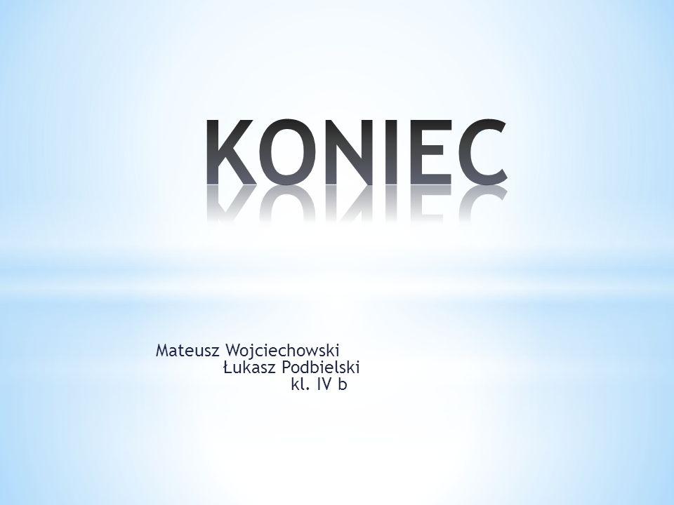 Mateusz Wojciechowski Łukasz Podbielski kl. IV b