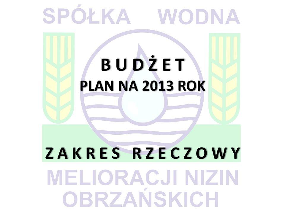 B U D Ż E T PLAN NA 2013 ROK Z A K R E S R Z E C Z O W Y B U D Ż E T PLAN NA 2013 ROK Z A K R E S R Z E C Z O W Y