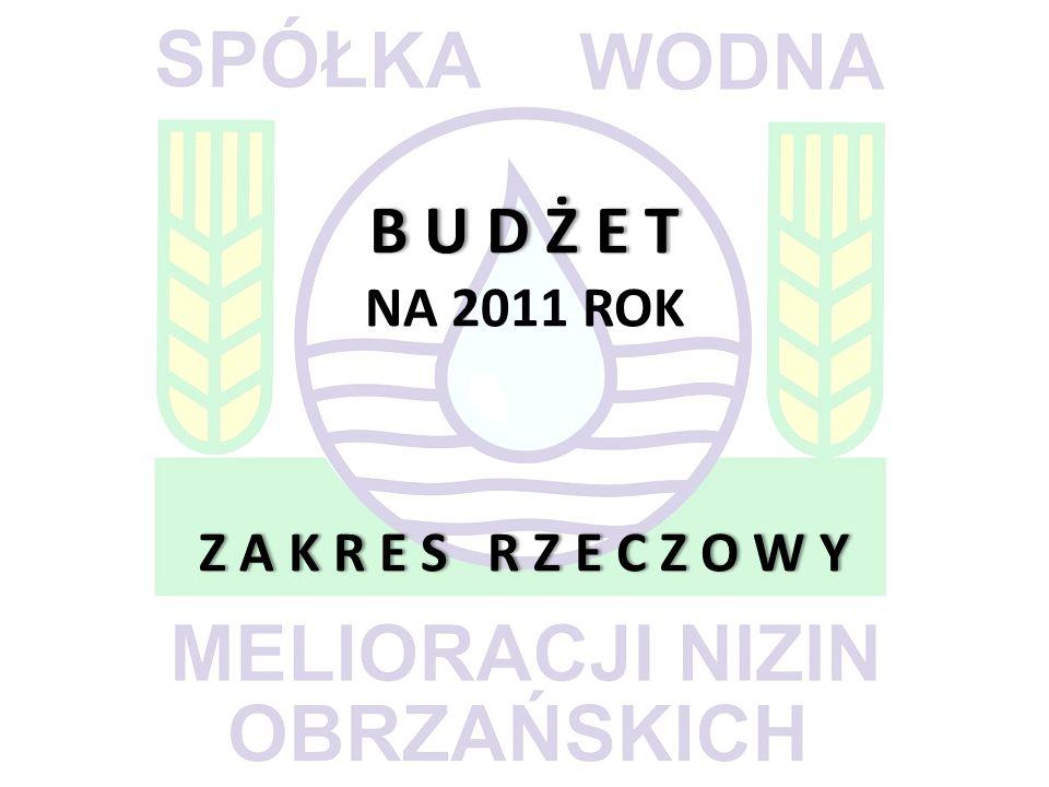 B U D Ż E T Z A K R E S R Z E C Z O W Y B U D Ż E T NA 2011 ROK Z A K R E S R Z E C Z O W Y
