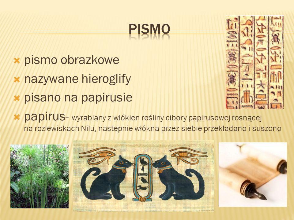pismo obrazkowe nazywane hieroglify pisano na papirusie papirus- wyrabiany z włókien rośliny cibory papirusowej rosnącej na rozlewiskach Nilu, następn