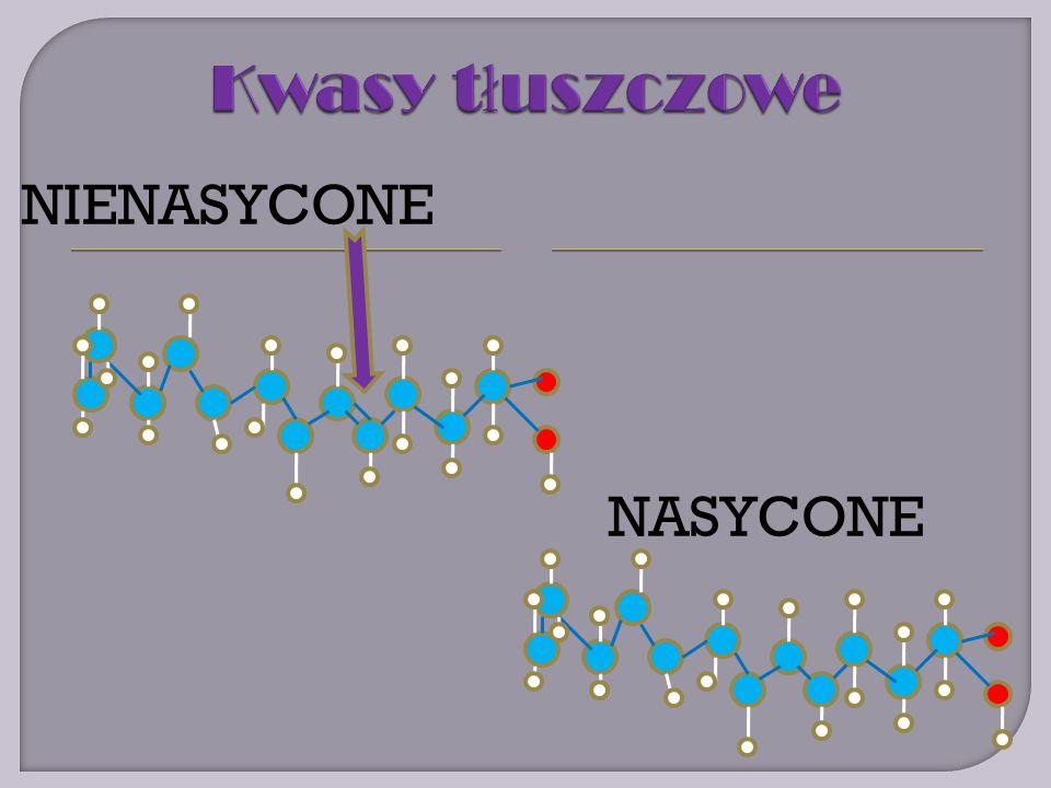 NASYCONE NIENASYCONE