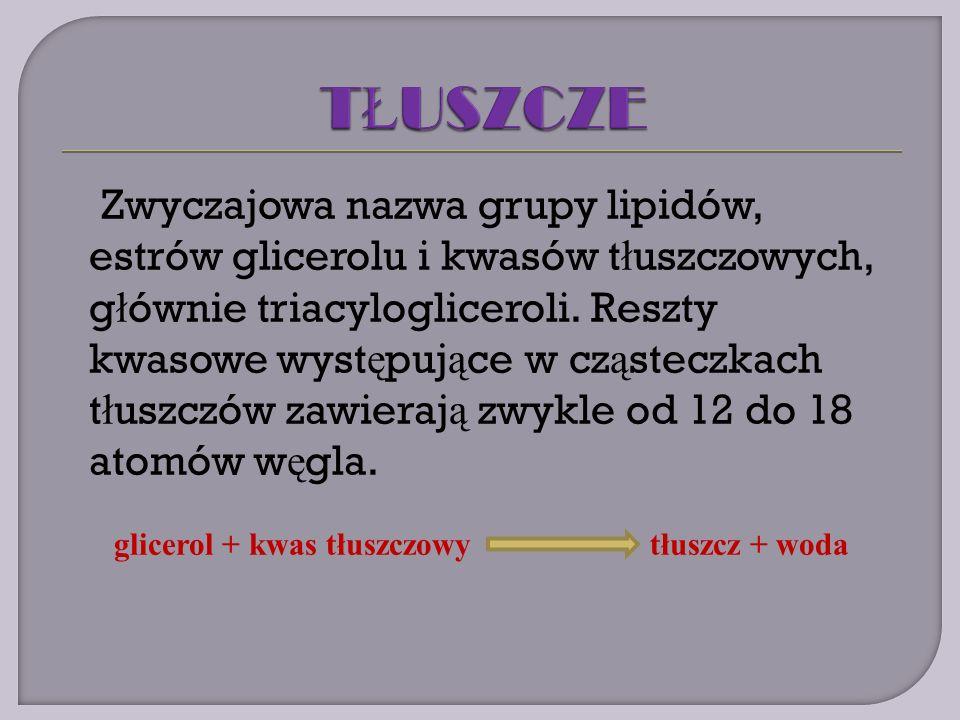 Zwyczajowa nazwa grupy lipidów, estrów glicerolu i kwasów t ł uszczowych, g ł ównie triacylogliceroli.