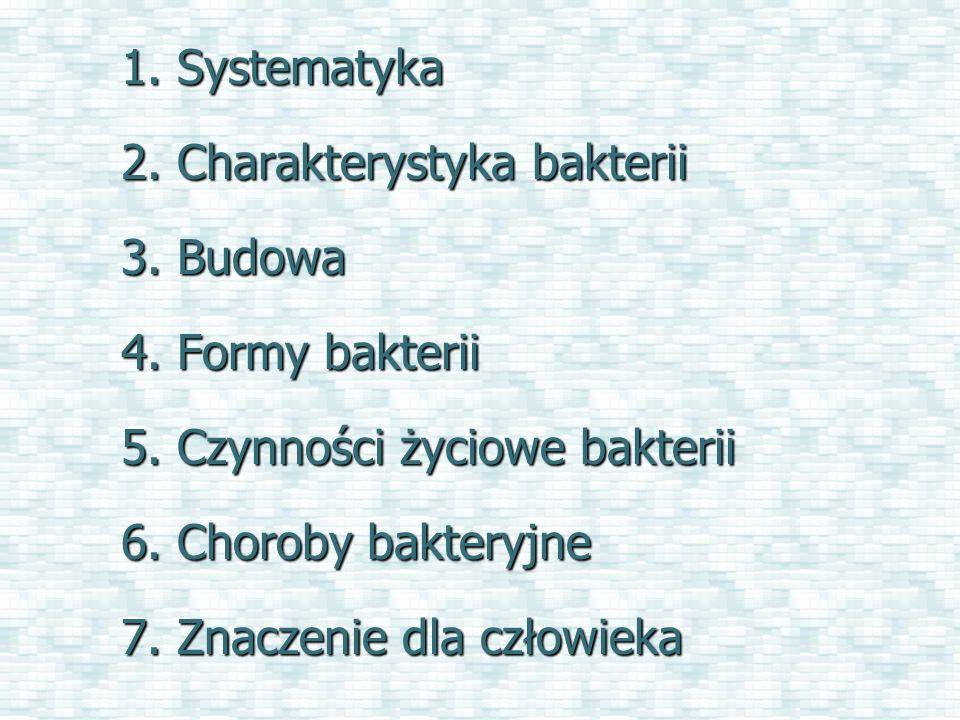 Systematyka bakterii Królestwo: Bezjądrowe (Prokaryota) Podkrólestwo: Archeany (Archea) Podkrólestwo: Eubacterie (Eubacteria) Typ: Sinice (Cyanobacteria) Typ: Promieniowce (Actinomycetes) Typ: Krętki (Spirochaeta) Typ: Firmicutes Typ: Proteobacterie