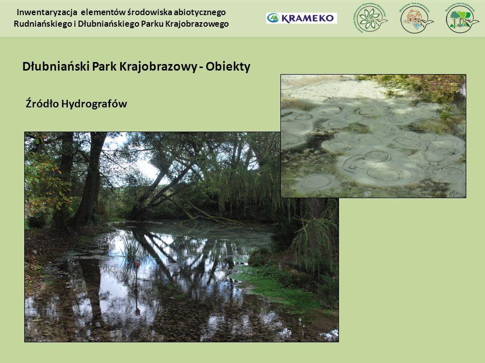 Źródło Hydrografów Inwentaryzacja elementów środowiska abiotycznego Rudniańskiego i Dłubniańskiego Parku Krajobrazowego Dłubniański Park Krajobrazowy