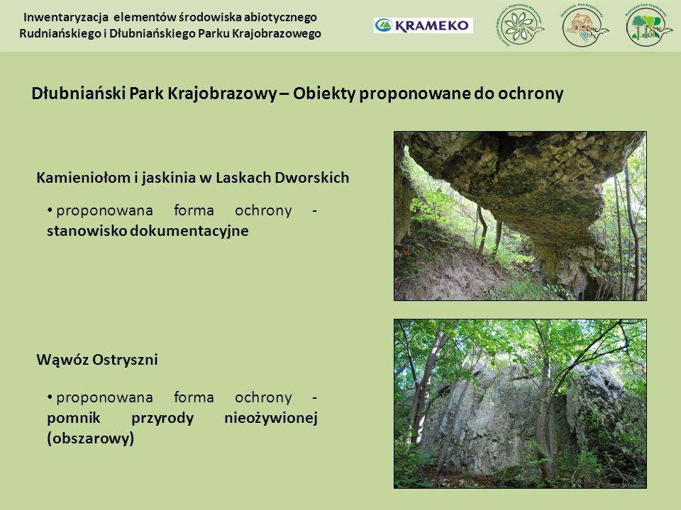 Kamieniołom i jaskinia w Laskach Dworskich proponowana forma ochrony - stanowisko dokumentacyjne Inwentaryzacja elementów środowiska abiotycznego Rudn