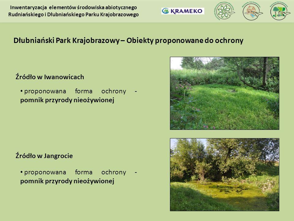 Źródło w Iwanowicach proponowana forma ochrony - pomnik przyrody nieożywionej Inwentaryzacja elementów środowiska abiotycznego Rudniańskiego i Dłubnia