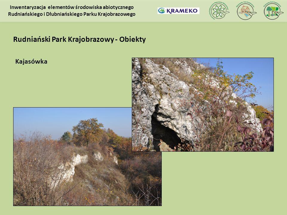 Kajasówka Inwentaryzacja elementów środowiska abiotycznego Rudniańskiego i Dłubniańskiego Parku Krajobrazowego Rudniański Park Krajobrazowy - Obiekty