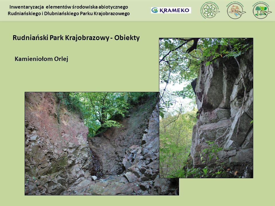 Kamieniołom Orlej Inwentaryzacja elementów środowiska abiotycznego Rudniańskiego i Dłubniańskiego Parku Krajobrazowego Rudniański Park Krajobrazowy -