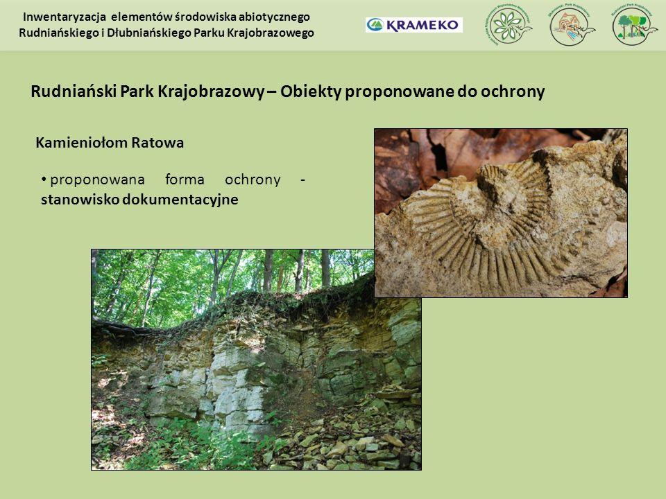 Kamieniołom Ratowa proponowana forma ochrony - stanowisko dokumentacyjne Inwentaryzacja elementów środowiska abiotycznego Rudniańskiego i Dłubniańskie