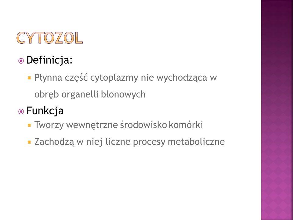 Definicja: Płynna część cytoplazmy nie wychodząca w obręb organelli błonowych Funkcja Tworzy wewnętrzne środowisko komórki Zachodzą w niej liczne proc