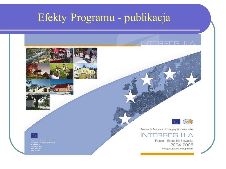 Efekty Programu - publikacja