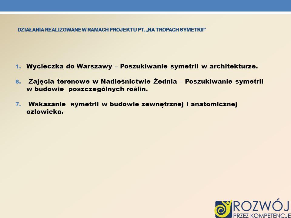 DZIAŁANIA REALIZOWANE W RAMACH PROJEKTU PT.NA TROPACH SYMETRII 8.