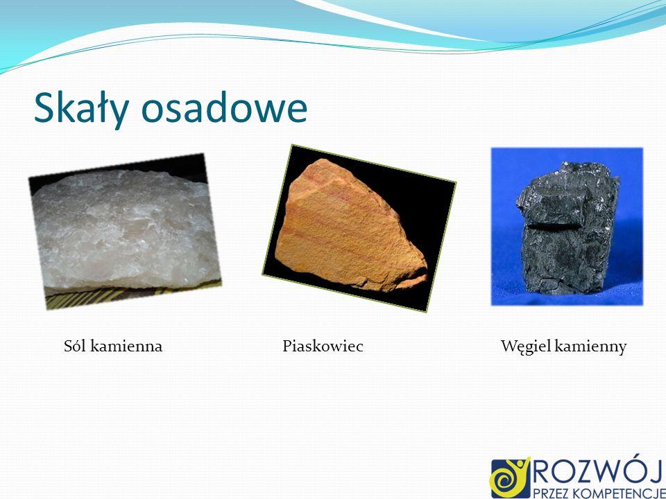 Skały osadowe Sól kamiennaPiaskowiecWęgiel kamienny