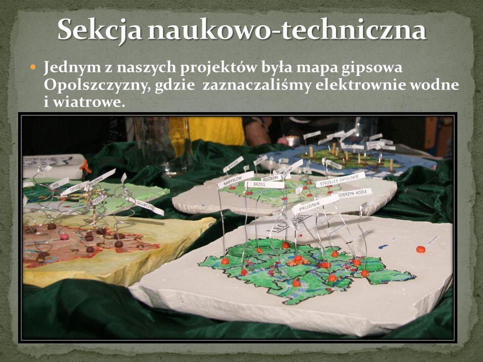 Jednym z naszych projektów była mapa gipsowa Opolszczyzny, gdzie zaznaczaliśmy elektrownie wodne i wiatrowe.