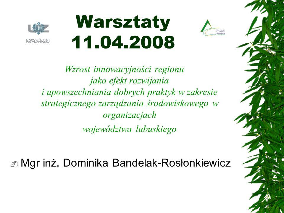 Warsztaty 11.04.2008 Wzrost innowacyjności regionu jako efekt rozwijania i upowszechniania dobrych praktyk w zakresie strategicznego zarządzania środo