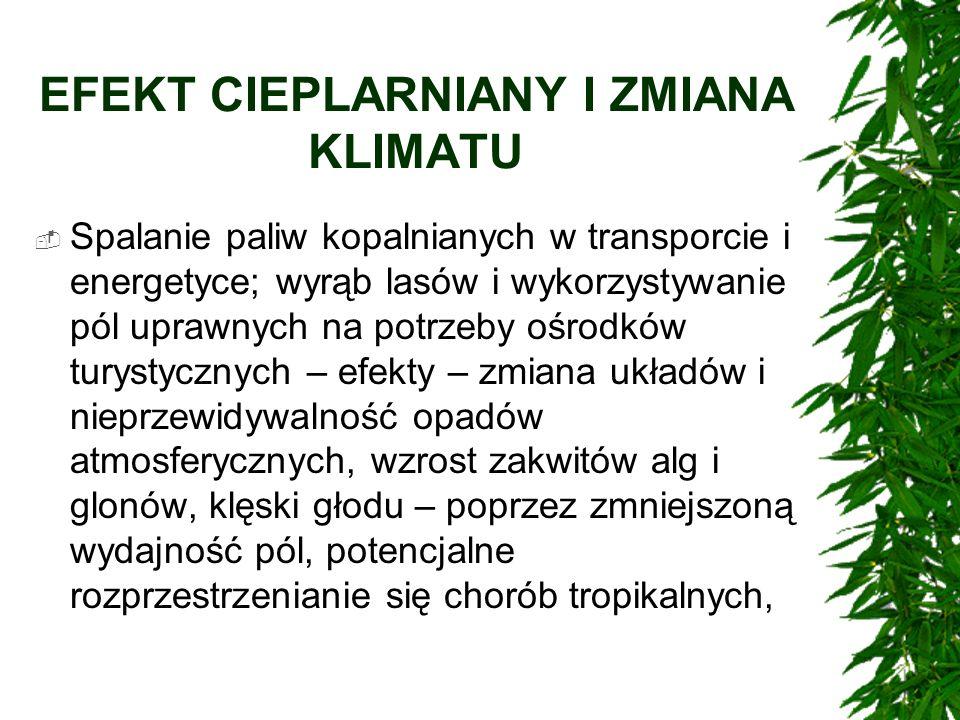EFEKT CIEPLARNIANY I ZMIANA KLIMATU Spalanie paliw kopalnianych w transporcie i energetyce; wyrąb lasów i wykorzystywanie pól uprawnych na potrzeby oś