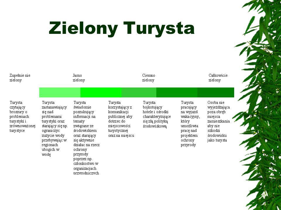 Zielony Turysta