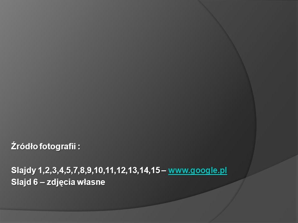 Źródło fotografii : Slajdy 1,2,3,4,5,7,8,9,10,11,12,13,14,15 – www.google.pl www.google.pl Slajd 6 – zdjęcia własne