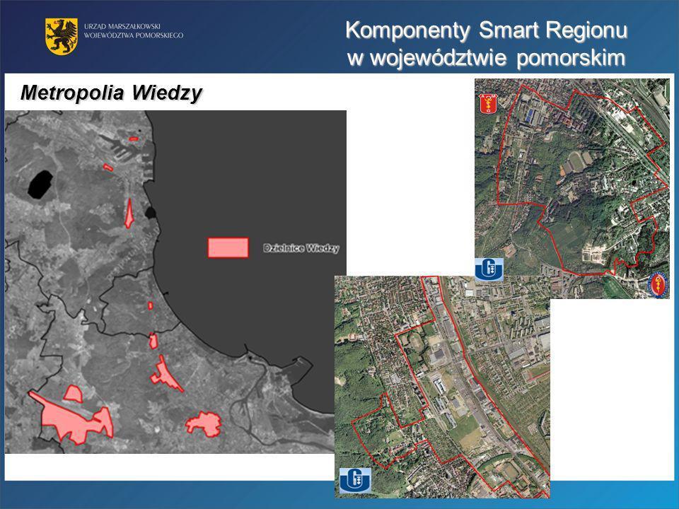 Metropolia Wiedzy Komponenty Smart Regionu w województwie pomorskim