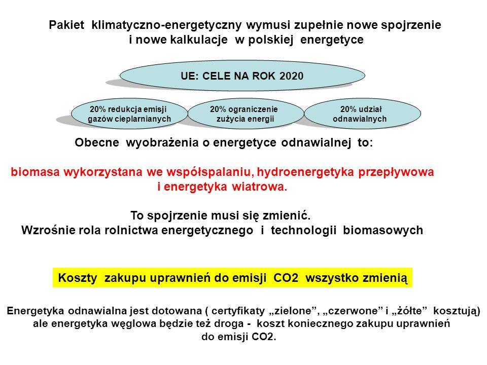 Pakiet klimatyczno-energetyczny wymusi zupełnie nowe spojrzenie i nowe kalkulacje w polskiej energetyce Obecne wyobrażenia o energetyce odnawialnej to: biomasa wykorzystana we współspalaniu, hydroenergetyka przepływowa i energetyka wiatrowa.
