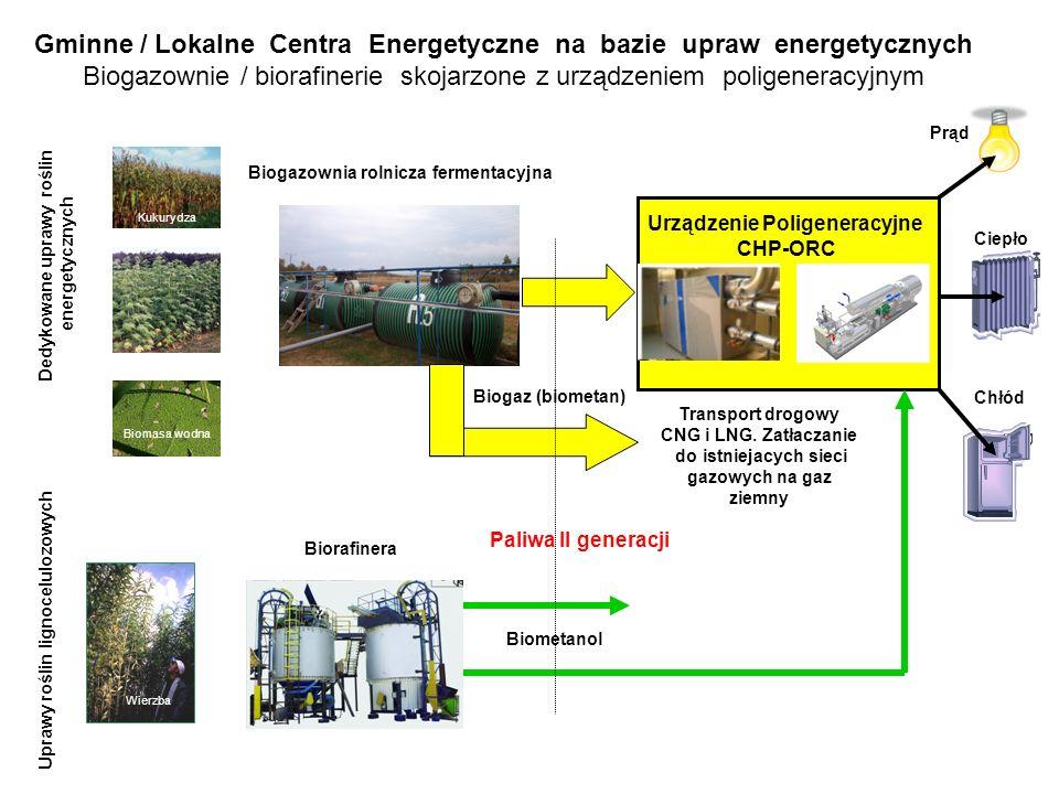 Transport drogowy CNG i LNG.