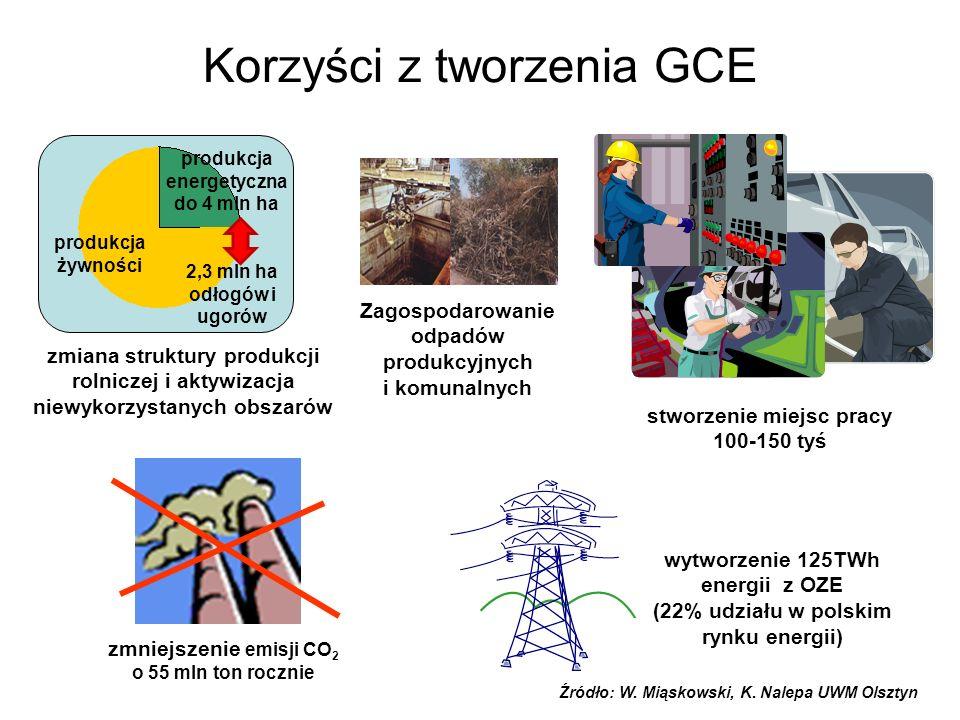 Korzyści z tworzenia GCE produkcja energetyczna do 4 mln ha produkcja żywności zmiana struktury produkcji rolniczej i aktywizacja niewykorzystanych obszarów zmniejszenie emisji CO 2 o 55 mln ton rocznie wytworzenie 125TWh energii z OZE (22% udziału w polskim rynku energii) stworzenie miejsc pracy 100-150 tyś 2,3 mln ha odłogów i ugorów Zagospodarowanie odpadów produkcyjnych i komunalnych Źródło: W.