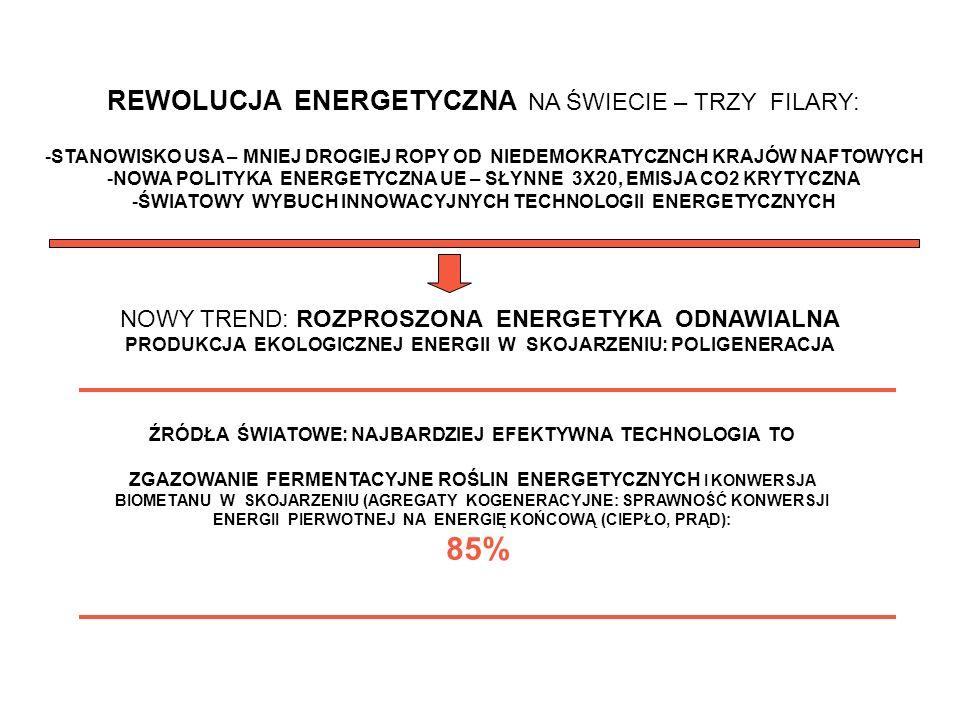Stacja pilotująca reaktora beztlenowego w Zakładzie Mleczarskim w Łaszczowie Biogazownie – kierunki rozwoju na przykładzie własnych rozwiązań Krzemieniewski M., Dębowski M., Zieliński M., Jędzrzejewska – Cicińska M.