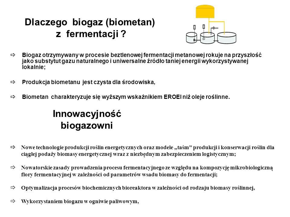 Dlaczego biogaz (biometan) z fermentacji .