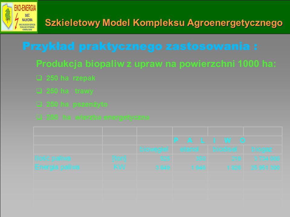 Instytut Maszyn Przepływowych PAN w Gdańsku 60 Szkieletowy Model Kompleksu Agroenergetycznego Przykład praktycznego zastosowania : Produkcja biopaliw z upraw na powierzchni 1000 ha: 250 ha rzepak 250 ha trawy 250 ha pszenżyto 250 ha wierzba energetyczna