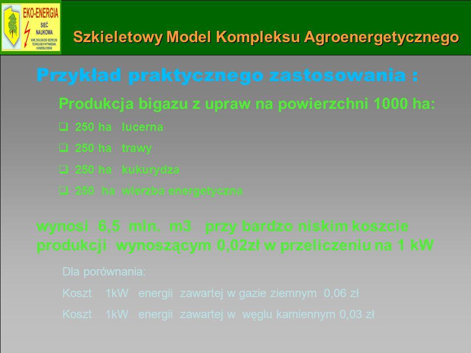 Instytut Maszyn Przepływowych PAN w Gdańsku 61 Szkieletowy Model Kompleksu Agroenergetycznego Przykład praktycznego zastosowania : Produkcja bigazu z upraw na powierzchni 1000 ha: 250 ha lucerna 250 ha trawy 250 ha kukurydza 250 ha wierzba energetyczna Dla porównania: Koszt 1kW energii zawartej w gazie ziemnym 0,06 zł Koszt 1kW energii zawartej w węglu kamiennym 0,03 zł wynosi 6,5 mln.