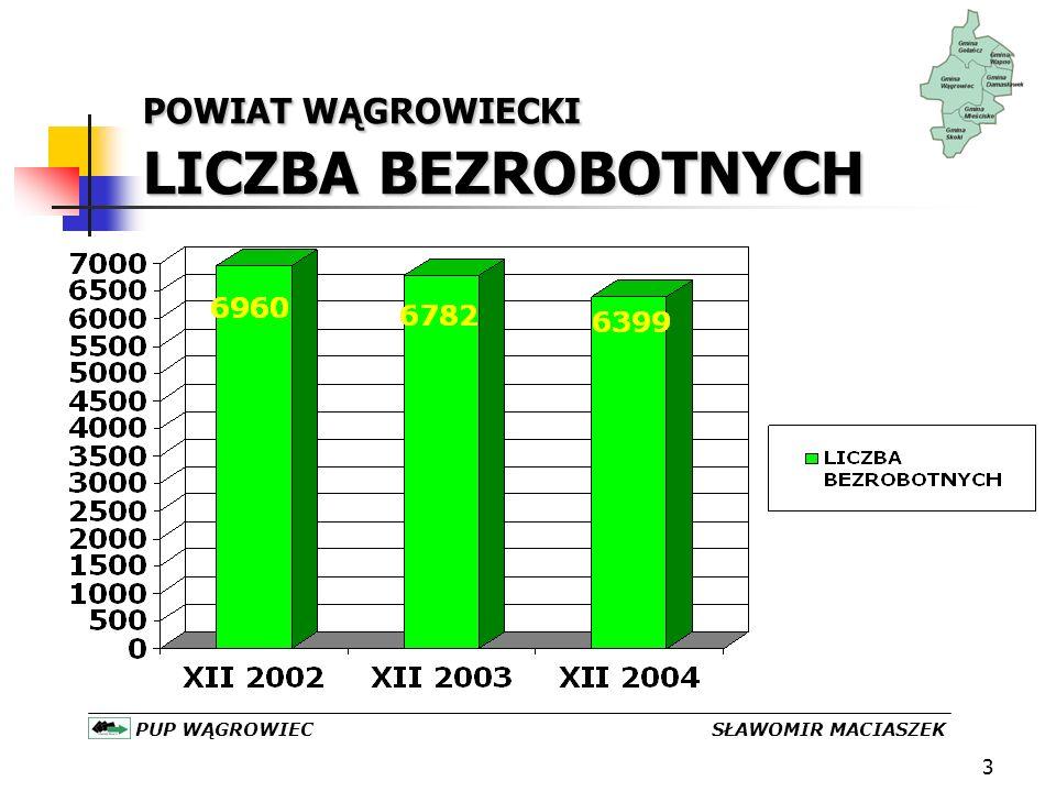 4 POWIAT WĄGROWIECKI BEZROBOCIE W GMINACH KOBIETY – MĘŻCZYŹNI /XII 2003-XII 2004 PUP WĄGROWIEC SŁAWOMIR MACIASZEK XII 2003 XII 2004