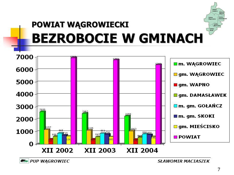 18 POWIAT WĄGROWIECKI GIEŁDY PRACY 19 /2003 26/2004 PUP WĄGROWIEC SŁAWOMIR MACIASZEK