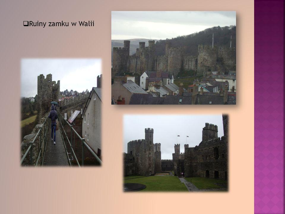 Ruiny zamku w Walii
