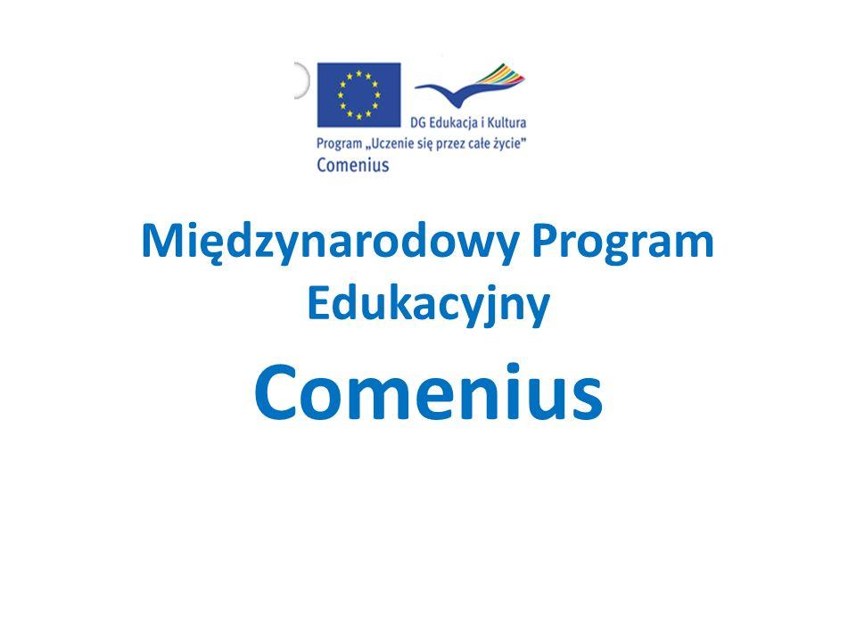 Europejskie Programy Edukacyjne Leonardo da Vinci -projekty wymian i staży międzynarodowych Comenius- Program wspiera międzynarodową współpracę szkół, uczniów i nauczycieli Młodzież w działaniu- Program umożliwia nawiązywanie kontaktów międzynarodowych i wymianę doświadczeń