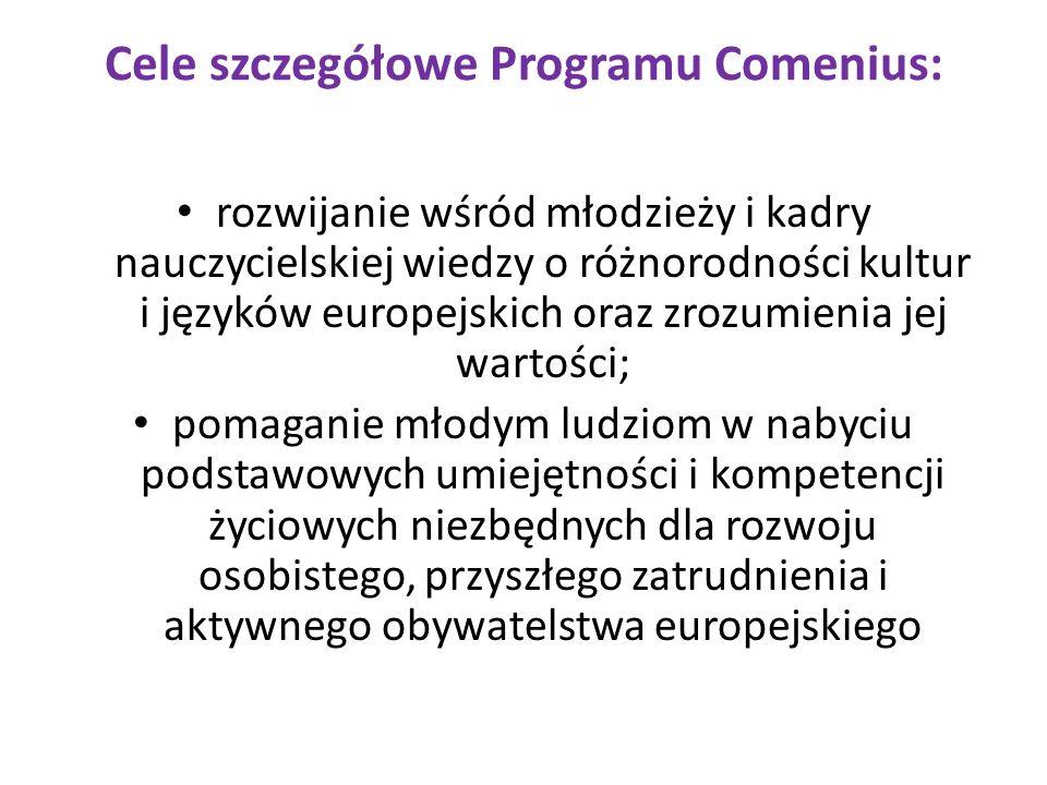 Cele operacyjne Programu Comenius: poprawa pod względem jakościowym i ilościowym mobilności, w której uczestniczą uczniowie i kadra nauczycielska z różnych państw członkowskich; zachęcanie do nauki nowożytnych języków obcych; wspieranie tworzenia innowacyjnych i opartych na technologiach informacyjnych treści, usług, metodologii uczenia oraz praktyk w zakresie uczenia się przez całe życie;