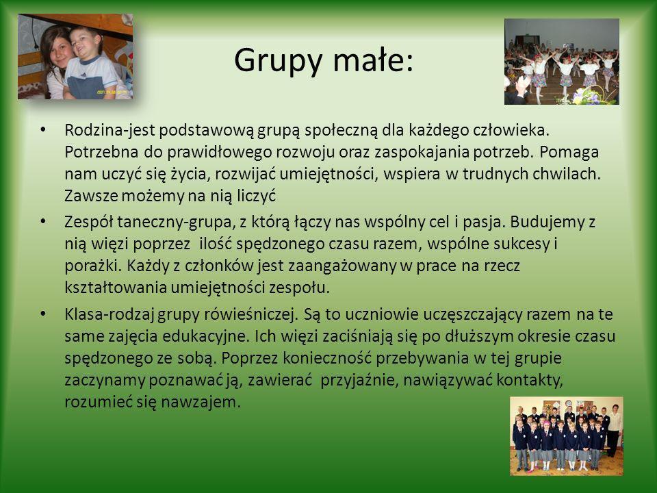 Grupy małe: Rodzina-jest podstawową grupą społeczną dla każdego człowieka. Potrzebna do prawidłowego rozwoju oraz zaspokajania potrzeb. Pomaga nam ucz