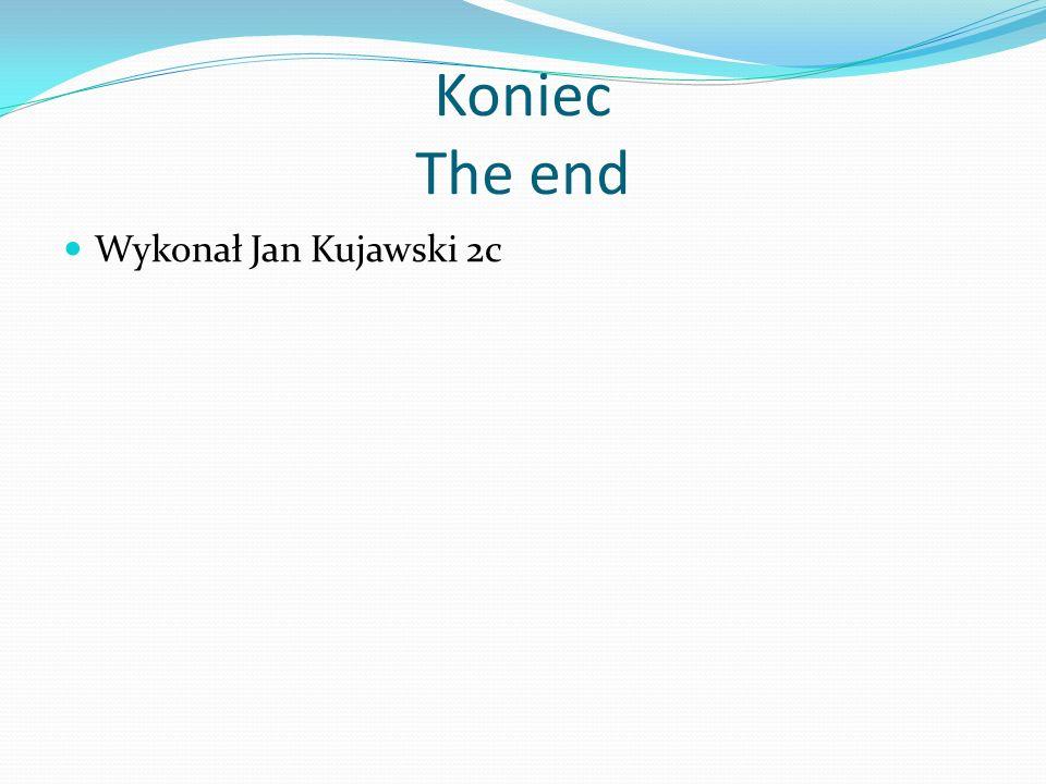 Koniec The end Wykonał Jan Kujawski 2c