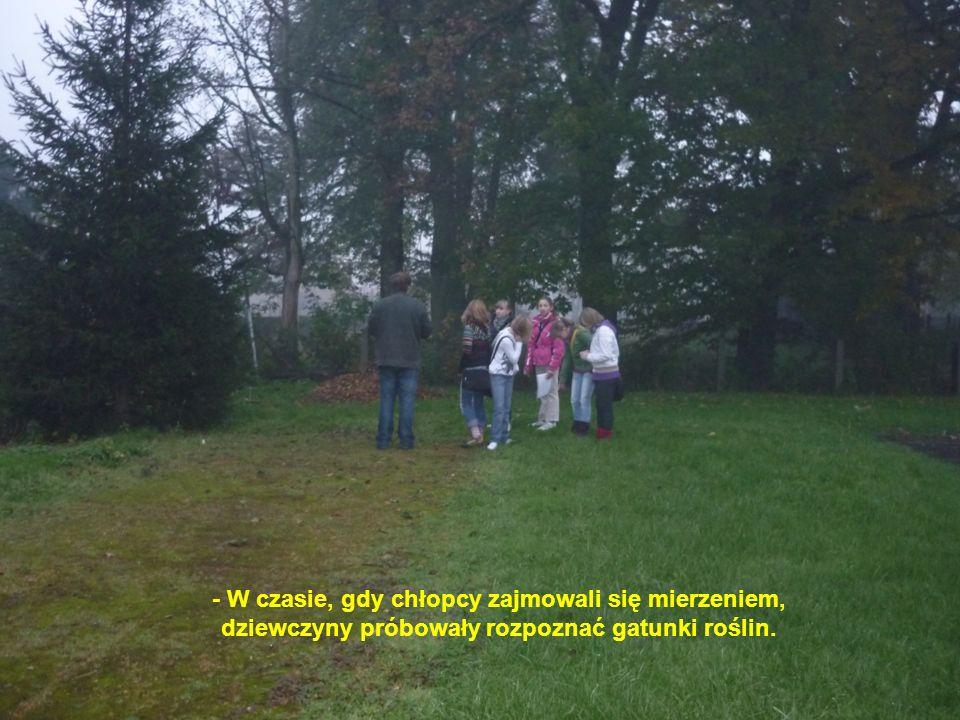 - W czasie, gdy chłopcy zajmowali się mierzeniem, dziewczyny próbowały rozpoznać gatunki roślin.