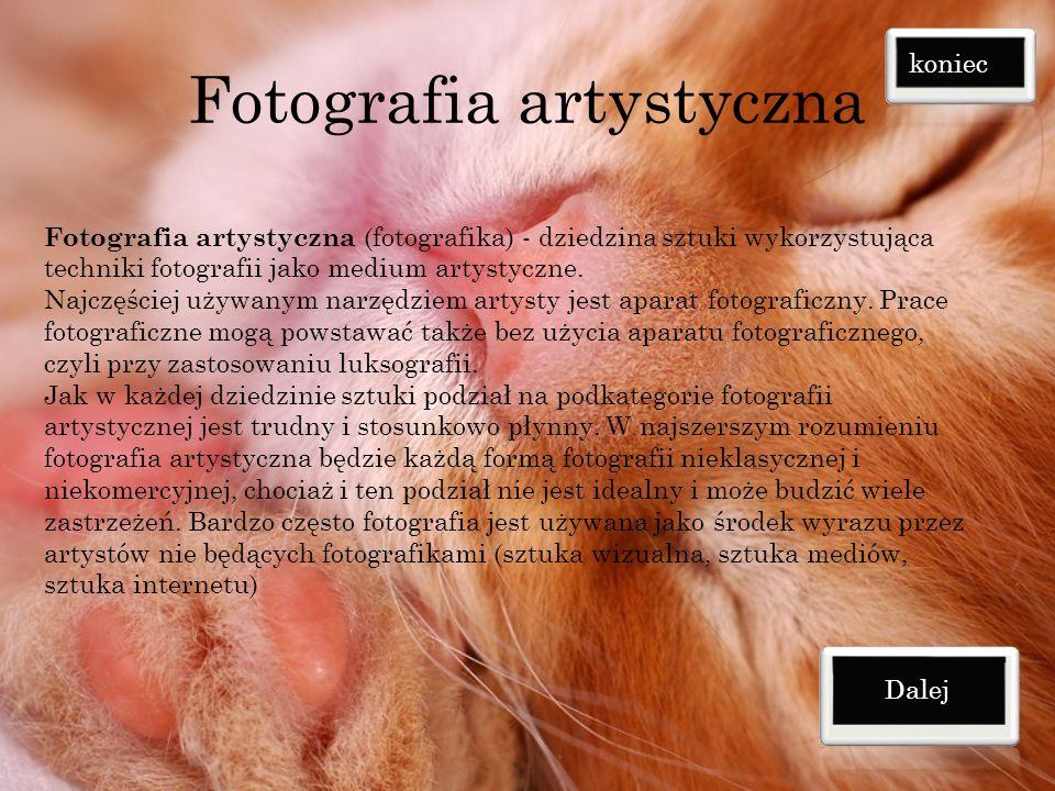 Fotografia artystyczna Fotografia artystyczna (fotografika) - dziedzina sztuki wykorzystująca techniki fotografii jako medium artystyczne.
