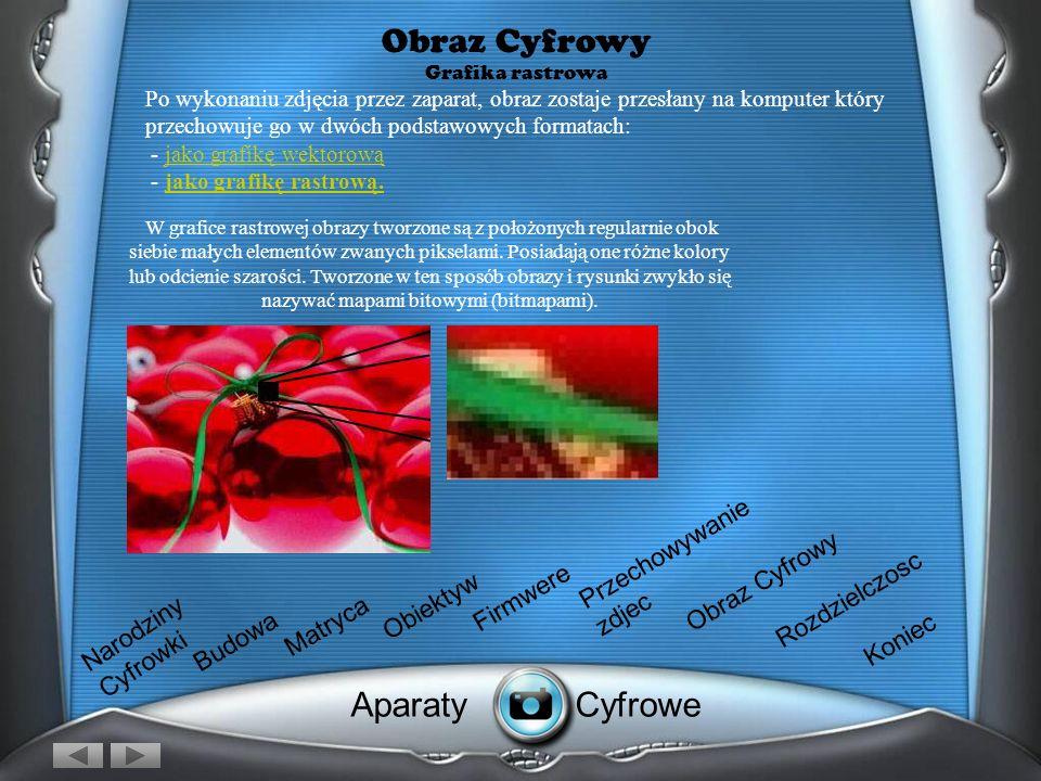 Obraz Cyfrowy Grafika Wektorowy Po wykonaniu zdjęcia przez zaparat, obraz zostaje przesłany na komputer który przechowuje go w dwóch podstawowych form