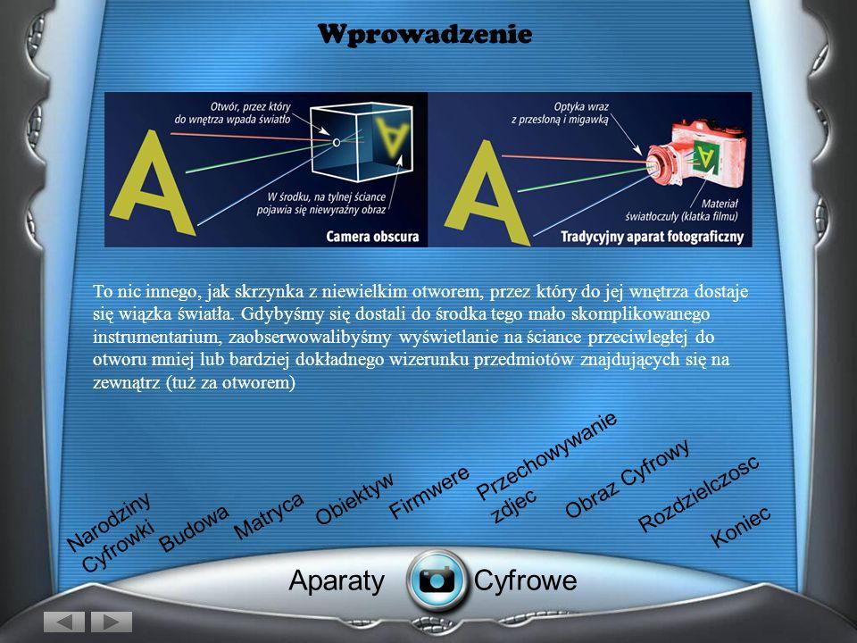 Obraz Cyfrowy Grafika Wektorowy Po wykonaniu zdjęcia przez zaparat, obraz zostaje przesłany na komputer który przechowuje go w dwóch podstawowych formatach: - jako grafikę wektorową - jako grafikę rastrową.jako grafikę wektorowąjako grafikę rastrową.