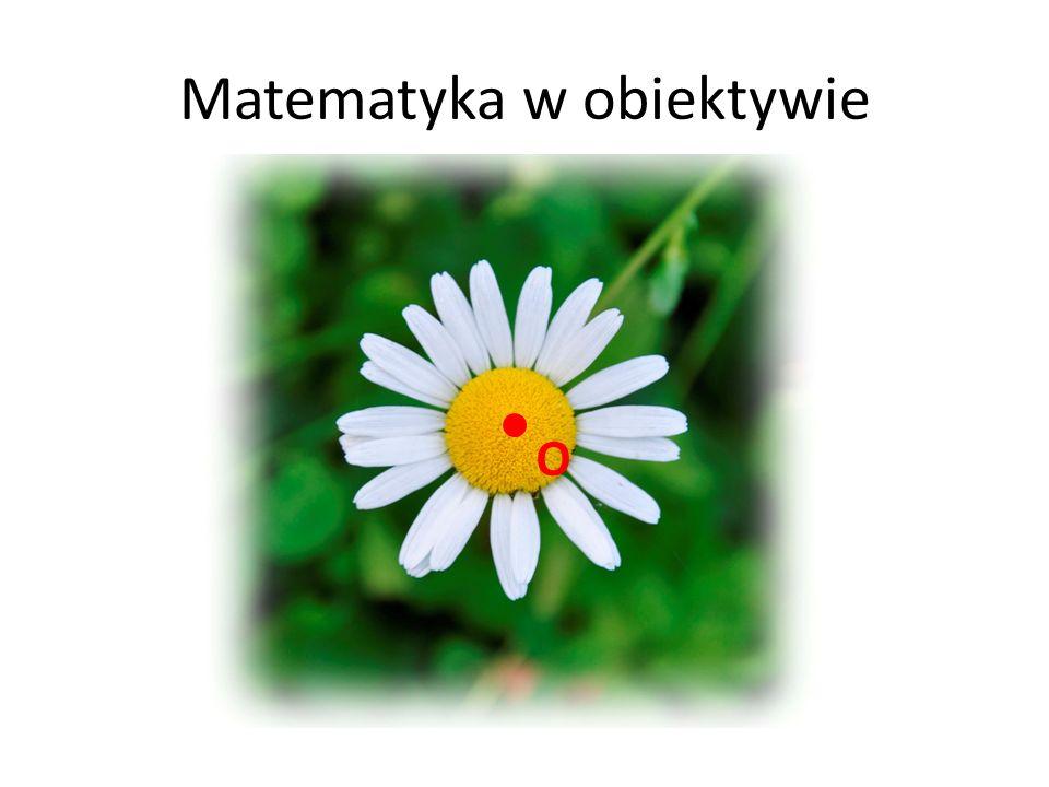 Matematyka w obiektywie O