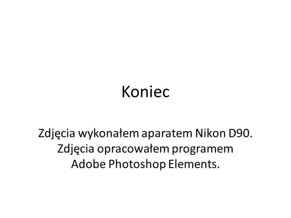 Koniec Zdjęcia wykonałem aparatem Nikon D90. Zdjęcia opracowałem programem Adobe Photoshop Elements.