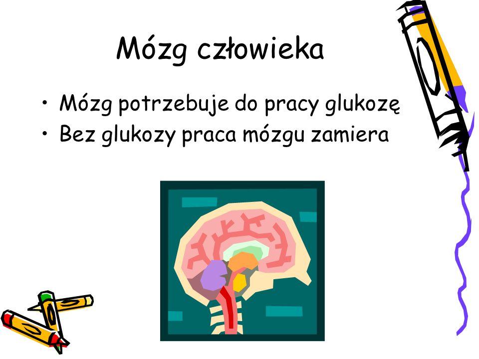 Mózg człowieka Mózg potrzebuje do pracy glukozę Bez glukozy praca mózgu zamiera