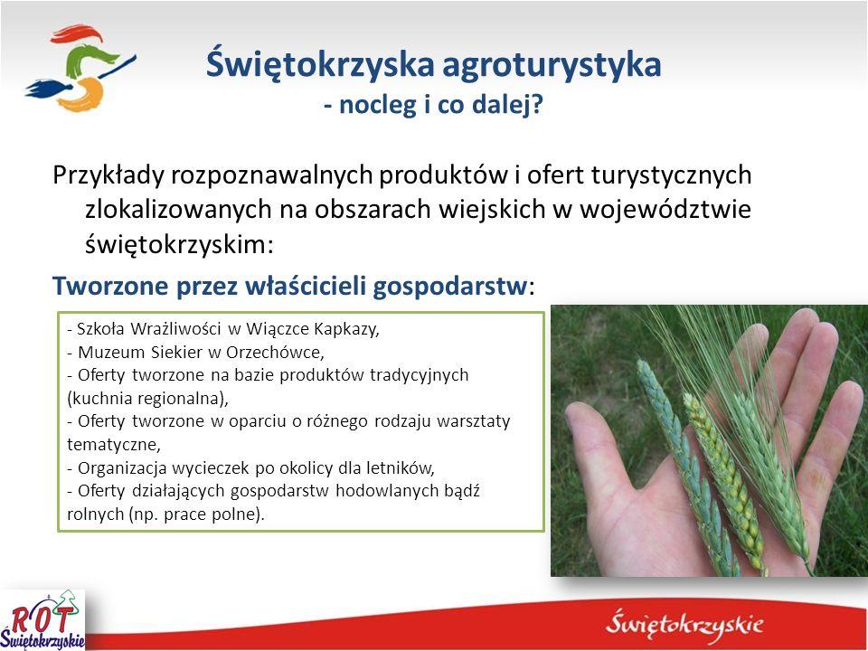 Świętokrzyska agroturystyka - nocleg i co dalej? Przykłady rozpoznawalnych produktów i ofert turystycznych zlokalizowanych na obszarach wiejskich w wo