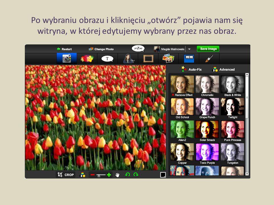 Legenda narzędzi programu: W tym oknie możemy edytować zdjęcie przez różne efekty i zmianę kolory.